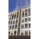 Un chat saute du 4e étage d'un immeuble en feu (Chicago)