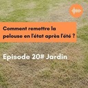 Podcast 20 // Jardin : Comment remettre la pelouse en l'état après l'été ?