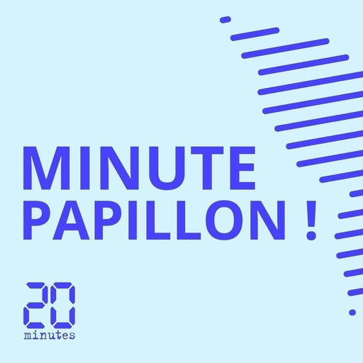 Minute Papillon! Flash info soir - 3 juillet 2018