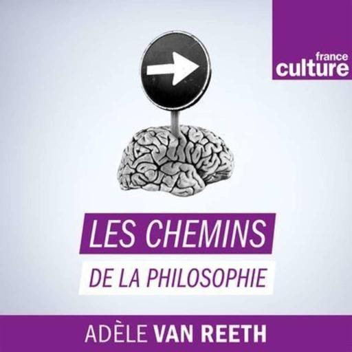 """Profession philosophe (77/100) : Frédéric Gros : """"Le corps est toujours en avance sur la pensée"""""""