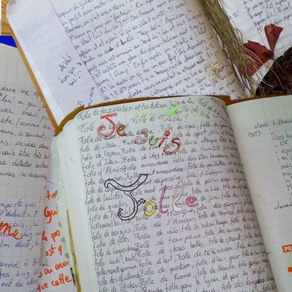 Le cahier - souvenirs précis de l'adolescence