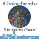 #175 A l'ombre d'un arbre (4) Le térébinthe d'Absalom