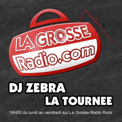 LA TOURNEE DE DJ ZEBRA - Dimanche 25 Decembre 2016