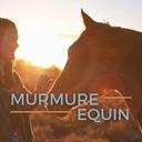 11. Vivre avec un cheval blessé / malade