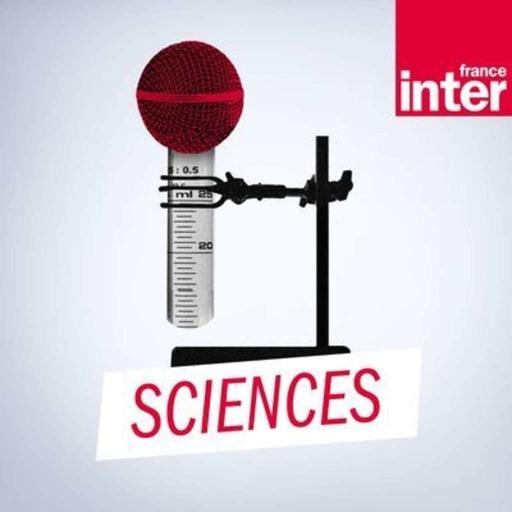 Les prix Ig-Nobel : les travaux de recherche les plus insolites de 2019