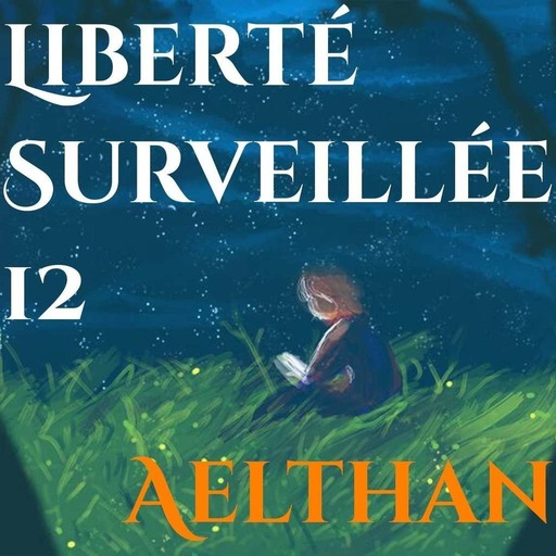 Liberté Surveillée 12 – Histoires, Imitations, Flechettes