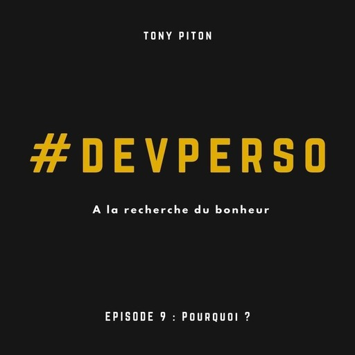 #DevPerso Ep. 9 : Pourquoi ?