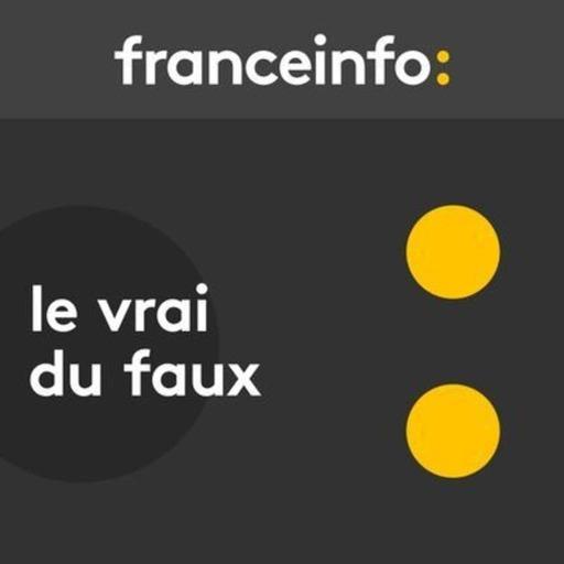 Coronavirus : la France fait-elle plus de tests que l'Allemagne, l'Espagne et l'Italie, comme l'affirme Gabriel Attal ?