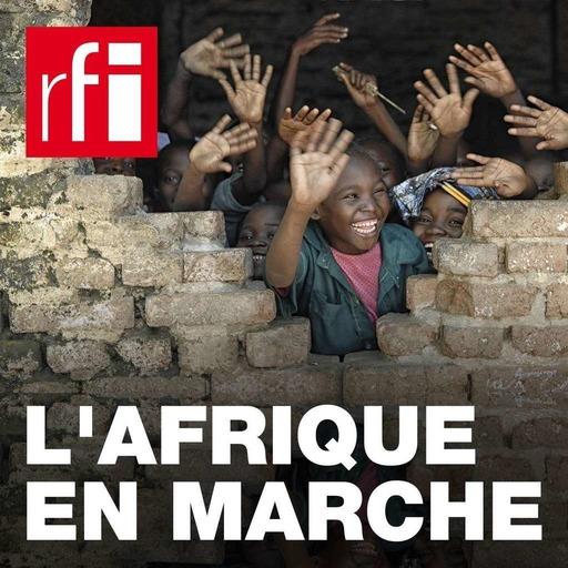L'Afrique en marche - Tchad: le «femmomètre» suit les engagements politiques faits aux femmes rurales