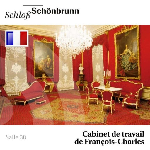 38 - Cabinet de travail de François-Charles