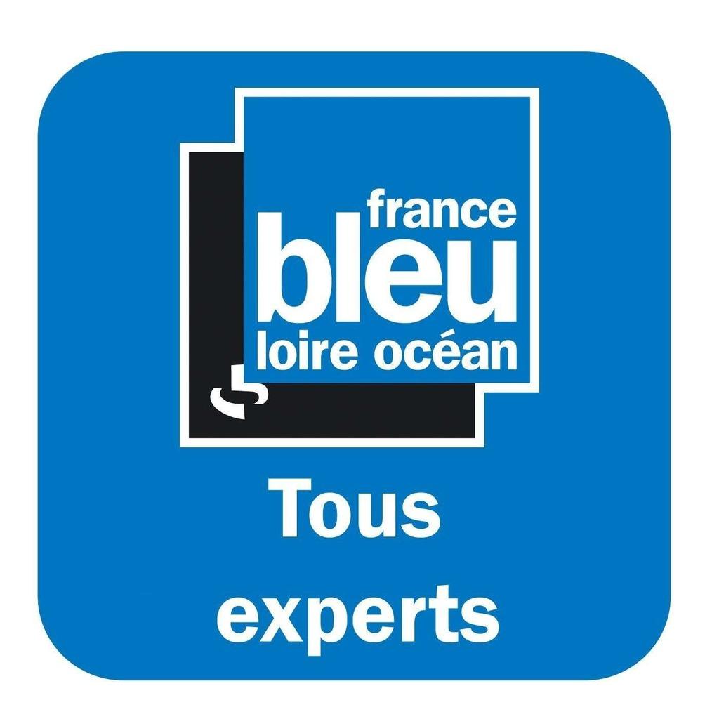 Tous experts - France Bleu Loire Océan